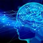 腸内細菌が脳に及ぼす影響とは?!