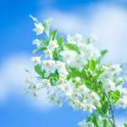 呼吸と集中力の関係とは・・・